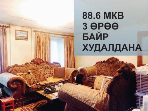 50667362_2677046872335455_5494280438883024896_n
